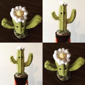 natalies cactus